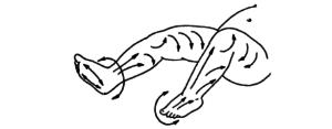 массаж передней поверхности бедра