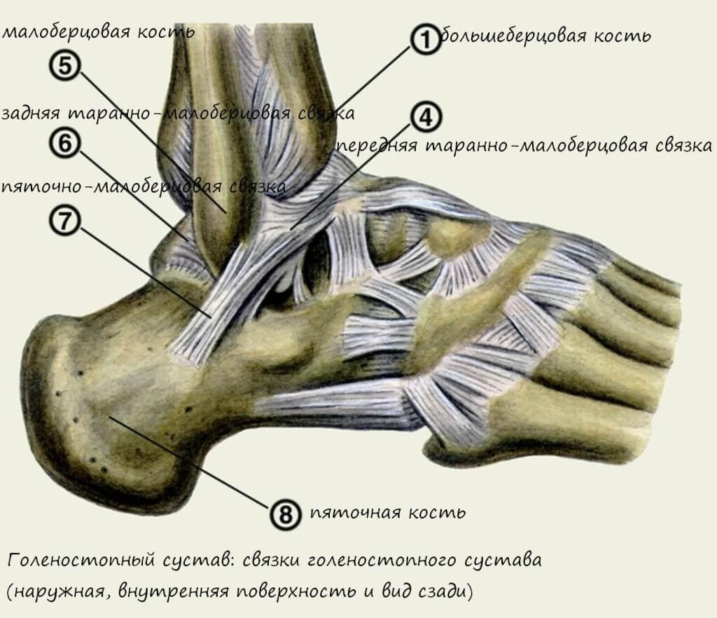 Облазит кожа на ступнях ног фото причины у взрослых детей