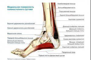 3 способа лечения болей в лодыжках Чем это опасно для Вас
