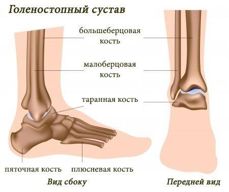 Код мкб вывих голеностопного сустава остеопатия при дисплазии тазабедренного сустава