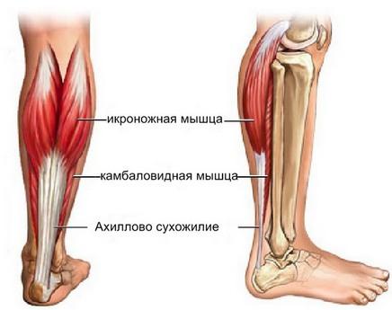 Боли в ноге спереди ниже колена