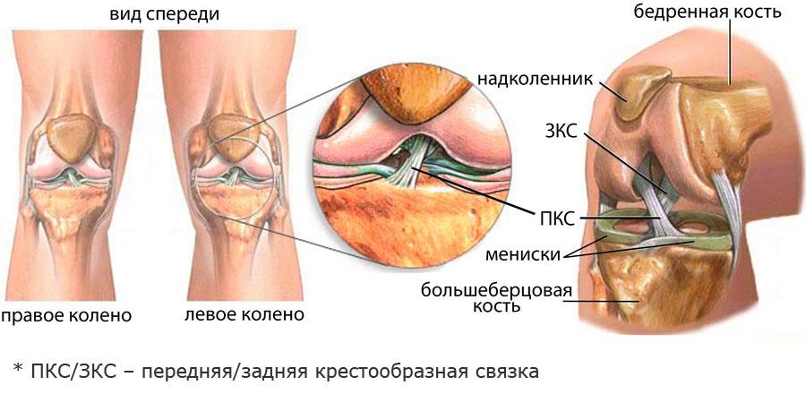 Дистрофия связок коленного сустава растяжение связок левой части сустава