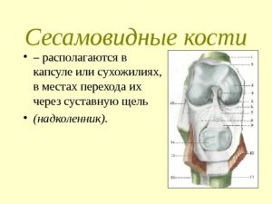 Дети рождаются без коленных чашечек