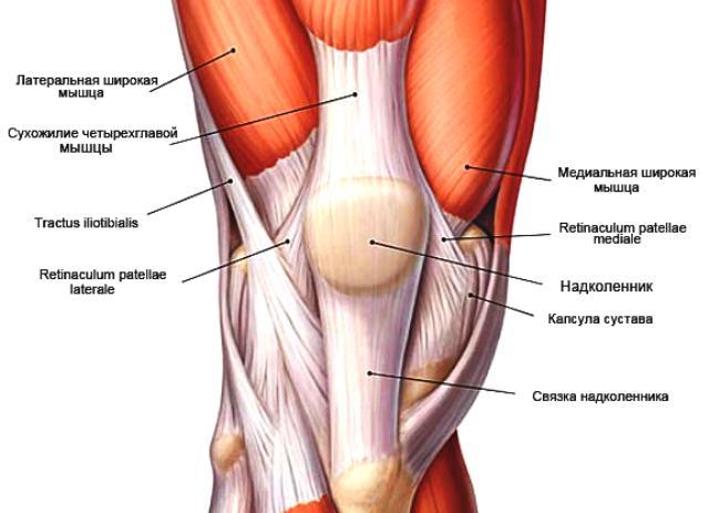 чем лечить боли в плечевом суставе народные средства