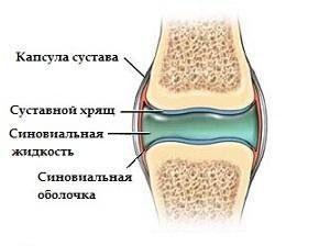 Методы восстановления хрящей коленного сустава