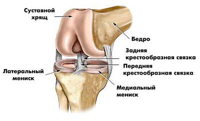 Болит левое колено эзотерика выбит локтевой сустав