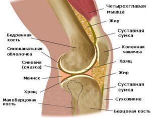 Зарядка для коленного сустава евдокименко