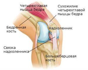 Почему сильно хрустит колено и болит