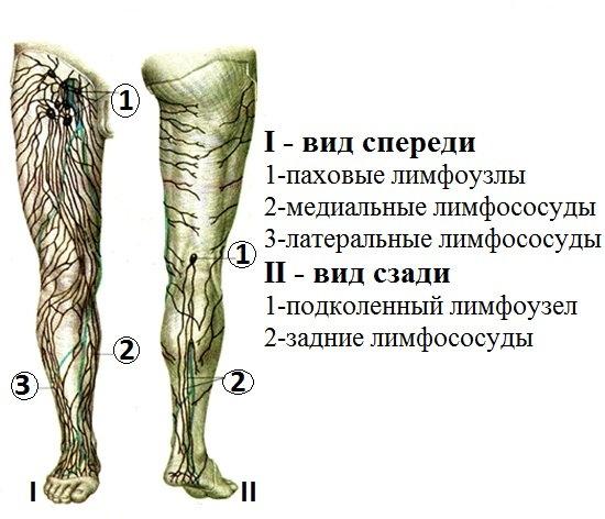 Чем лечить воспаление лимфоузлов под коленом отеки суставов стопы