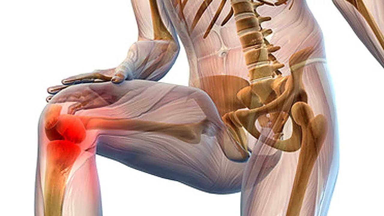 Скрипит коленный сустав при сгибании ортез для голеностопного сустава купить в минске
