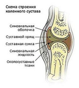Изображение - Ферматрон после артроскопии коленного сустава kolenny-sustav-269x300