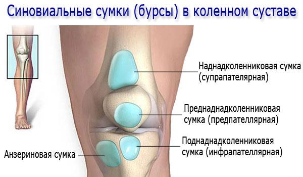 При нажатии болит колено что купить для костей и суставов