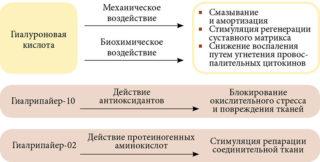 Изображение - Инъекции гиалуроновой кислоты в тазобедренный сустав hondro1-320x162