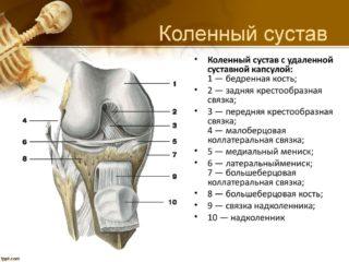 Болят колени при приседании и вставании причины лечение