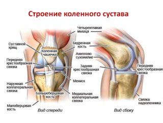 Боль с обратной стороны колена причины