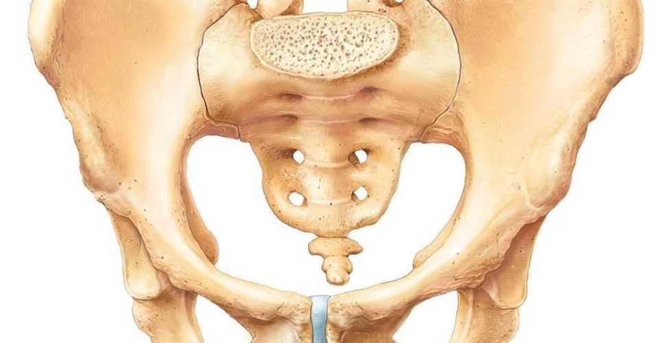 Болит тазобедренная кость слева лечение