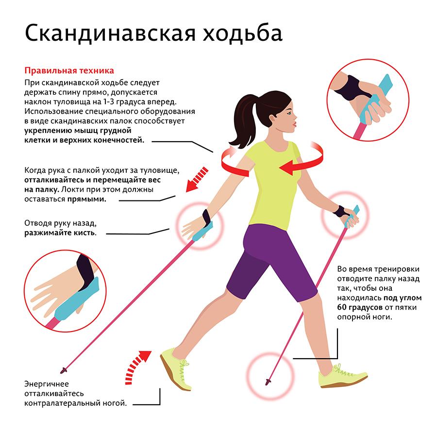 Можно Ли Похудеть Если Только Быстро Ходить. Сколько шагов в день должен проходить человек, чтобы похудеть: как правильно ходить, какую ходьбу выбрать
