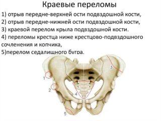 Подвздошная кость - Люблю жить!