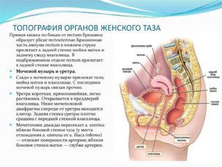 Изображение - Причины жжения тазобедренных суставов slide-14-2-320x240
