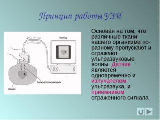 Узи органов малого таза что включает 15