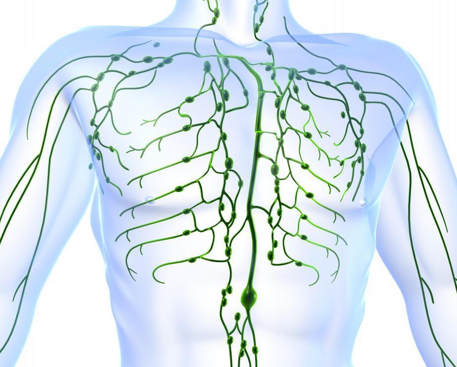 Увеличение лимфатических узлов в брюшной полости