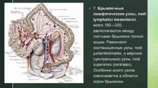 Почему возникает увеличение лимфоузлов в брюшной полости