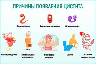 Болит грудь и низ живота часто хожу в туалет