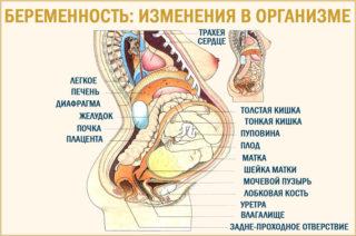 Тянущие боли внизу живота как при месячных при беременности на 38 недели