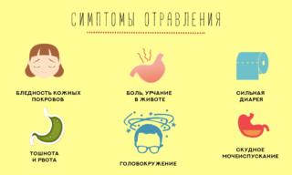 Болит желудок тошнит и кружится голова