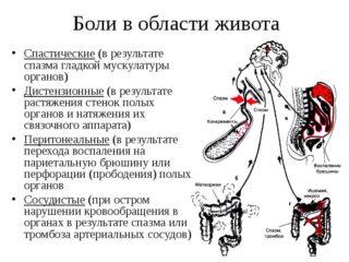 Схваткообразные и резкие боли в животе: причины и лечение