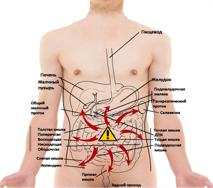 Боль в животе: причины, что делать, если болит живот