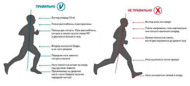 Как правильно бегать чтобы убрать живот
