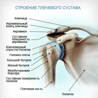 Артроз грудино ключичного сустава