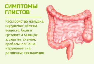 Тянет в брюшной полости