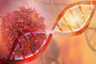 Тройной негативный рак молочной железы: истории выздоровления, иммунофенотип, удаление