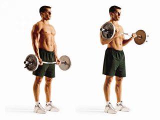 Упражнения со штангой на грудные мышцы: жим узким хватом, тяга штанги в наклоне