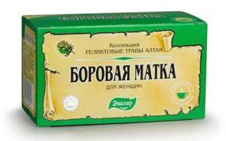 Лечение мастопатии камфорным, льняным и касторовым маслом, боровой маткой, красной щеткой и чистотелом