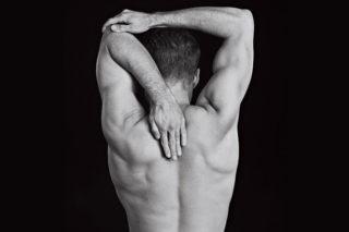 Грудные мышцы - упражнения, особенности тренировки, анатомия грудных мышц