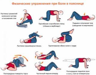 Как вылечить спину и поясницу в домашних условиях