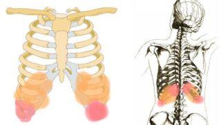 Боль слева под ребрами сзади со спины: причины, сопутствующие симптомы, лечение боли в левом подреберье, отдающей в спину