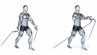 Упражнения для грудных мышц для мужчин кроссоверы