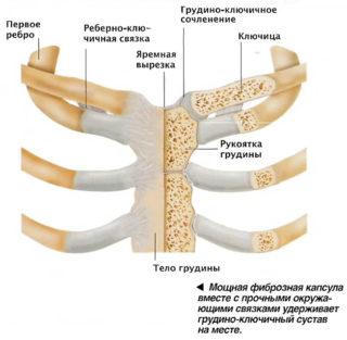 Боль правая сторона грудной клетки