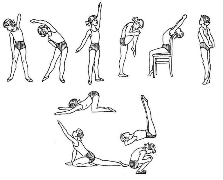 квартире упражнения для спины в домашних условиях картинки владею собственным