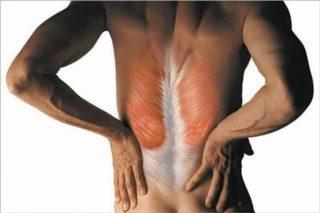 Что делать если у меня болит спина