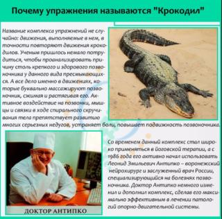 Упражнения для спины крокодил в картинках